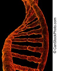 3d gene - 3d rendered illustration from a part of a double...