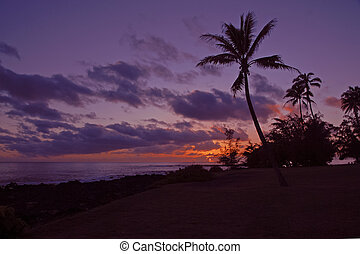 Sunset on Big Island Hawaii