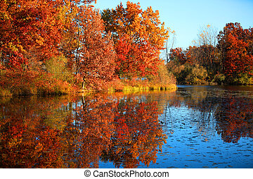 Autumn reflections - Beautiful landscape of autumn...