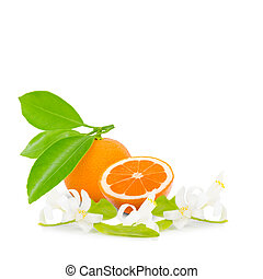 Tangerine - Photo of tangerine with slice, leaves and blooms...