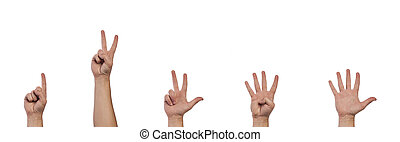 Gesturing hands - Hands showing numbers from one to five