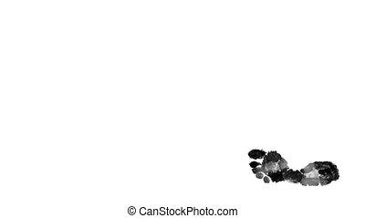 Black steps on white background