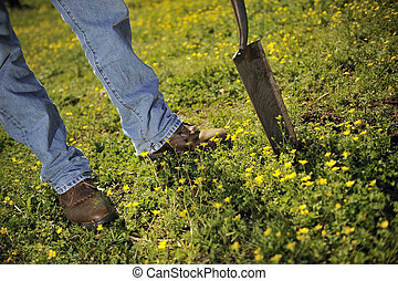 Boots and shovel - Farmer\'s work boots and shovel on grassy...