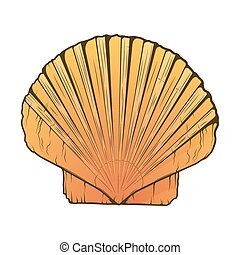 Sea Shell isolated on a white background. Color line art....