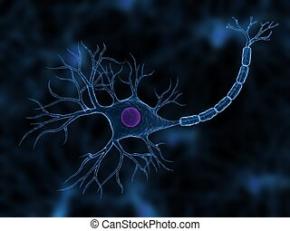 nerve cell - 3d rendered close up of a nerve cell