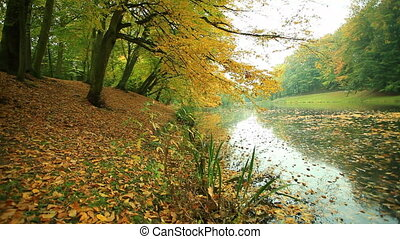 Autumn landscape in Poland Pond small lake water in park...