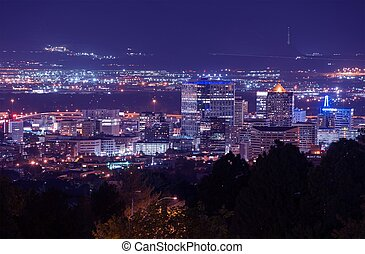 Salt Lake City Night Scenery. Cityscape at Night. City...