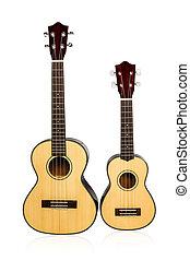 Two vintage Ukulele - Two Hawaiian ukulele standing next to...