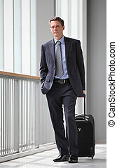 businessman with trolley traveling
