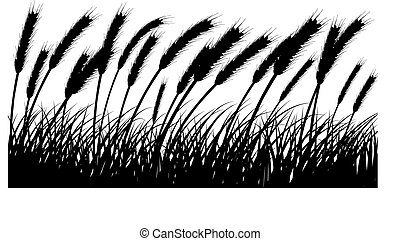 wheat and grass - Wheat and gras background. All objects are...