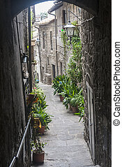 Viterbo Italy - Viterbo Lazio, Italy: typical old street in...