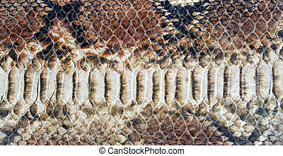 background of snake skin for leather accessories