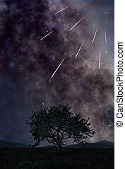 Star shower - Night landscape with starry sky and bright...
