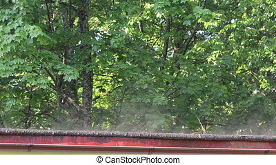 vapour steam roof morning - Beautiful vapour steam rise from...