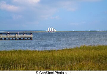 A Schooner in Charleston Harbor