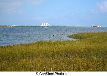 A Sailing Ship in Charleston Harbor - A schooner sails in...