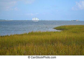 Un, Navegación, barco, en, Charleston, puerto,