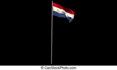 Netherlands national flag waving on flagpole on black...