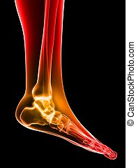 painful ankle - 3d rendered illustration of a highlighted...