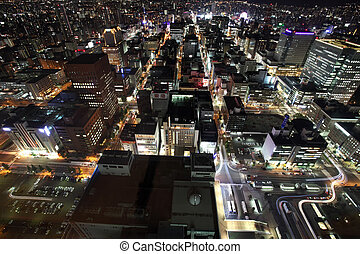 Cityscape of Downtown Sapporo , Japan