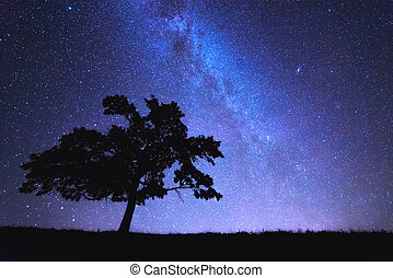 tree - alone tree and milky way