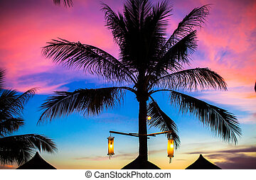 Blue pink and red sunset over sea beach with palm tree silhouette