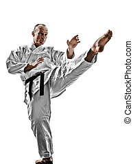 karate man - one karate kata training man isolated on white...