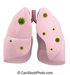 lung infection - 3d rendered illustration of human lung and...
