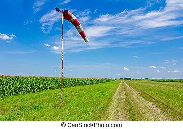 viento, dirección, indicador,