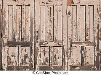 Old doors - Old vintage wooden door with white paint