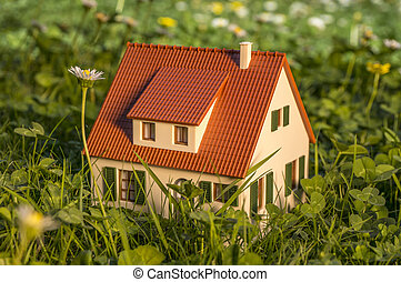 House on a meadow - Model of an old fashioned house on a...
