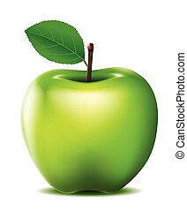 Green apple - vector illustration of Green apple