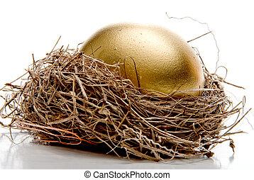 Golden Egg - A golden egg from the golden goose.