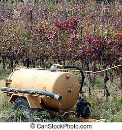 water tank to irrigate the vines and the grapes during the...