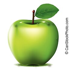 Fresh Green apple - vector illustration of Fresh Green apple