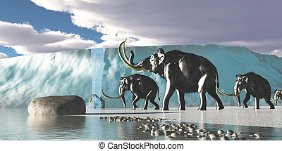 Glacier Mammoths - A herd of Woolly Mammoths encounter a...