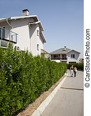 road between family houses - road and hedge between generic...