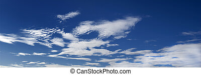 Vertical big sky - A blue sky with clouds