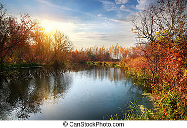 Autumn season on the river - Autumn season on the calm river...