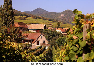 EUROPE FRANCE ALSACE - The wine Hills of the village of...