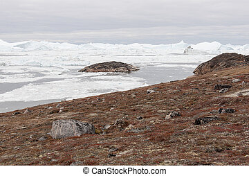 Arctic landscape in Greenland with icebergs - Arctic...