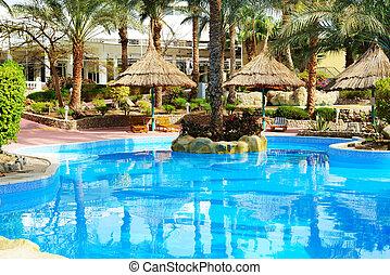 natación, piscina, en, lujo, hotel, Sharm, el, jeque,...