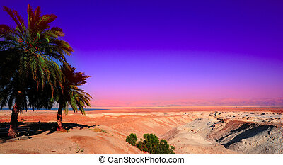 Dead Sea. - Landscape Of Judea Mountains Near Dead Sea....