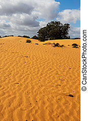 Perry Sandhills near Wentworth - New South Wales, Australia...