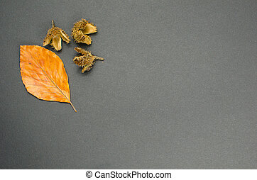 Fall decoration leaf and cones - Fall decoration of leaf and...