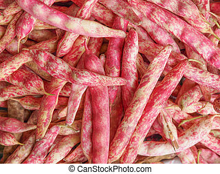 Cranberry beans - Cranberry variety of common beans aka...