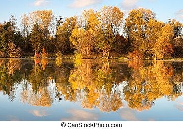 Fall, forest, lake
