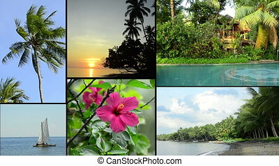 tropical impressions of asia - tropical videoclips of bali,...