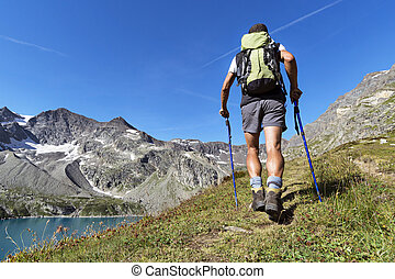 trekking in the Alps - Man trekking in the Alps Grand...