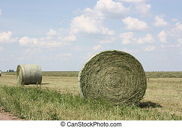 Kansas Hay Bales - Hay bales that were beside a road in the...